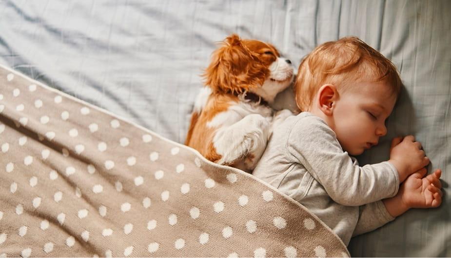 Baby-sleeping-diarrhea-in-babies-and-children-and-probiotics-925-529